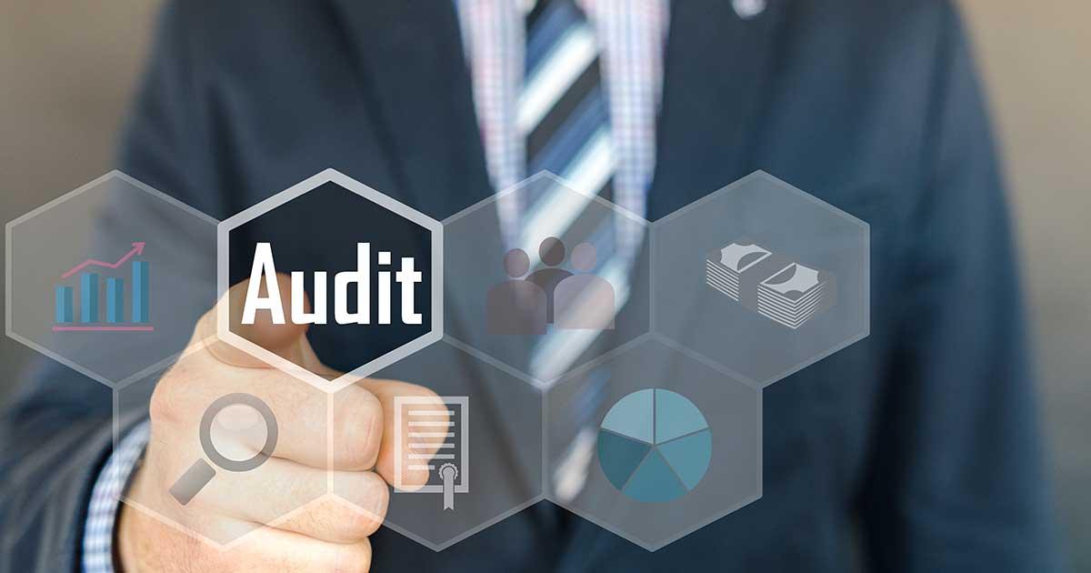 Audit aziendale
