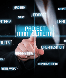 Project Manager nel Mondo IT