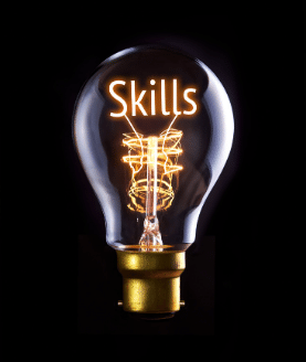 Project Manager Skill