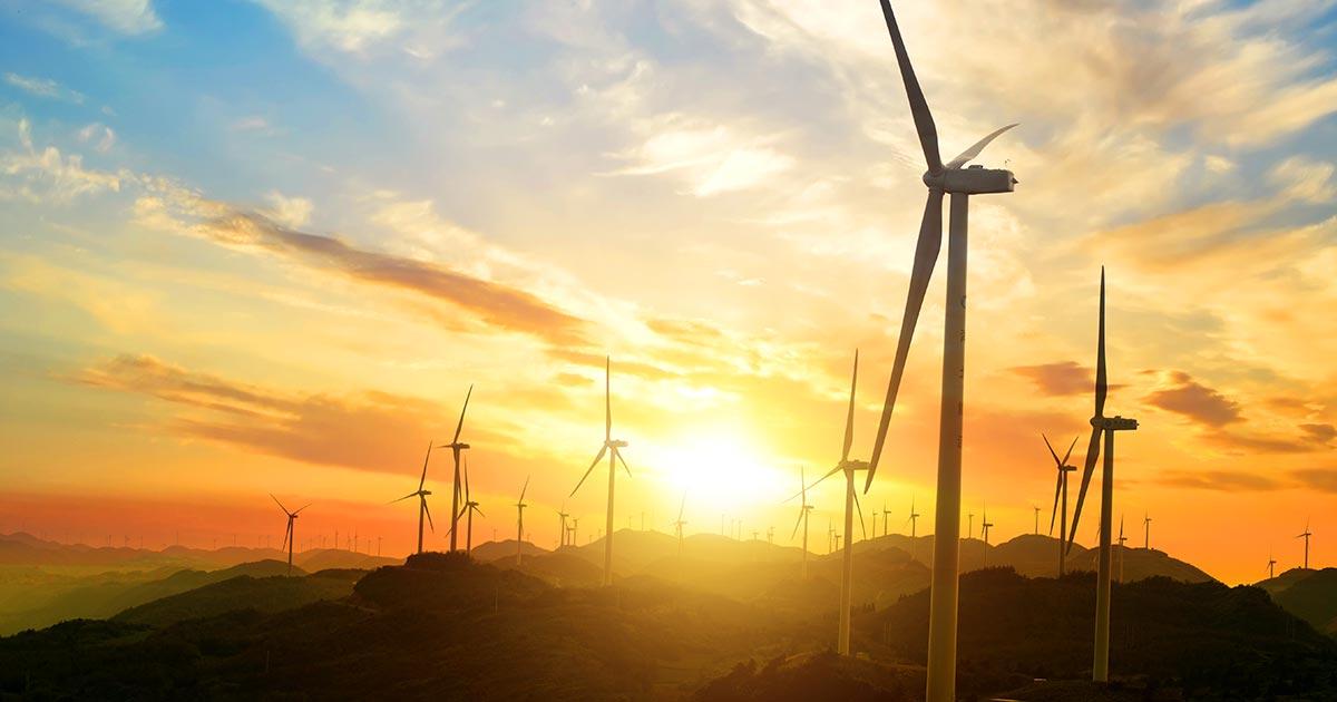 Green energy: che cos'è, perché è così importante, formazione sull'argomento