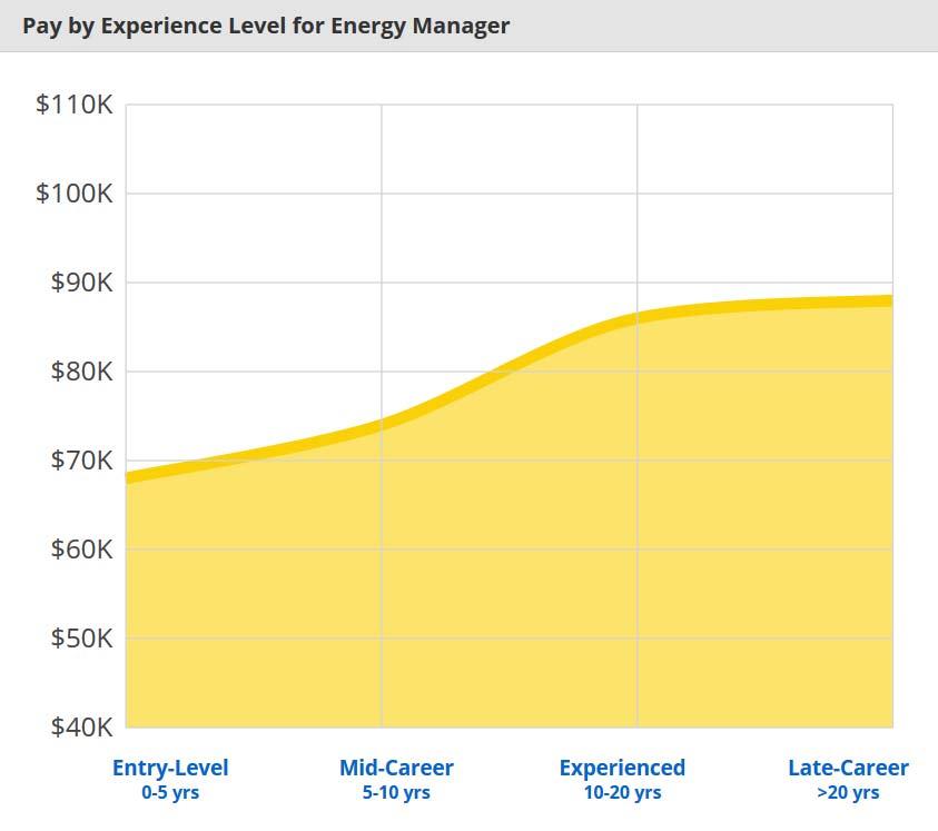 Stipendio Energy manager Stati Uniti