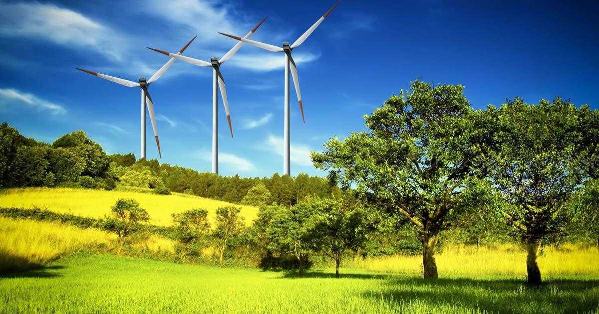 La green economy è un buon affare