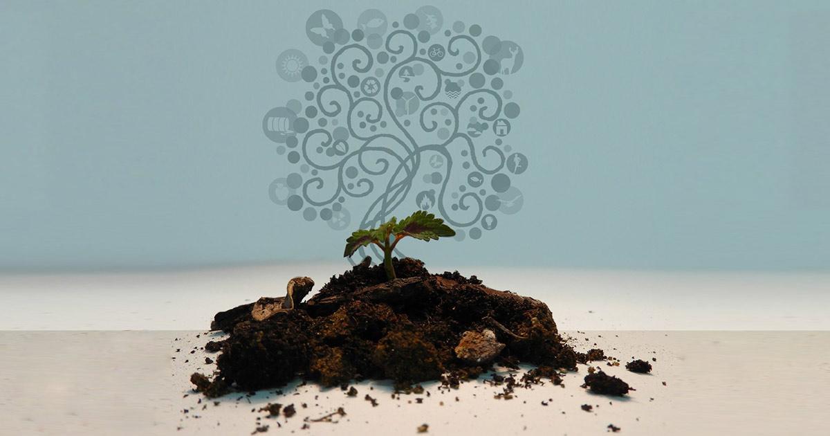 Primo Rapporto del Sistema Nazionale per la Protezione dell'Ambiente