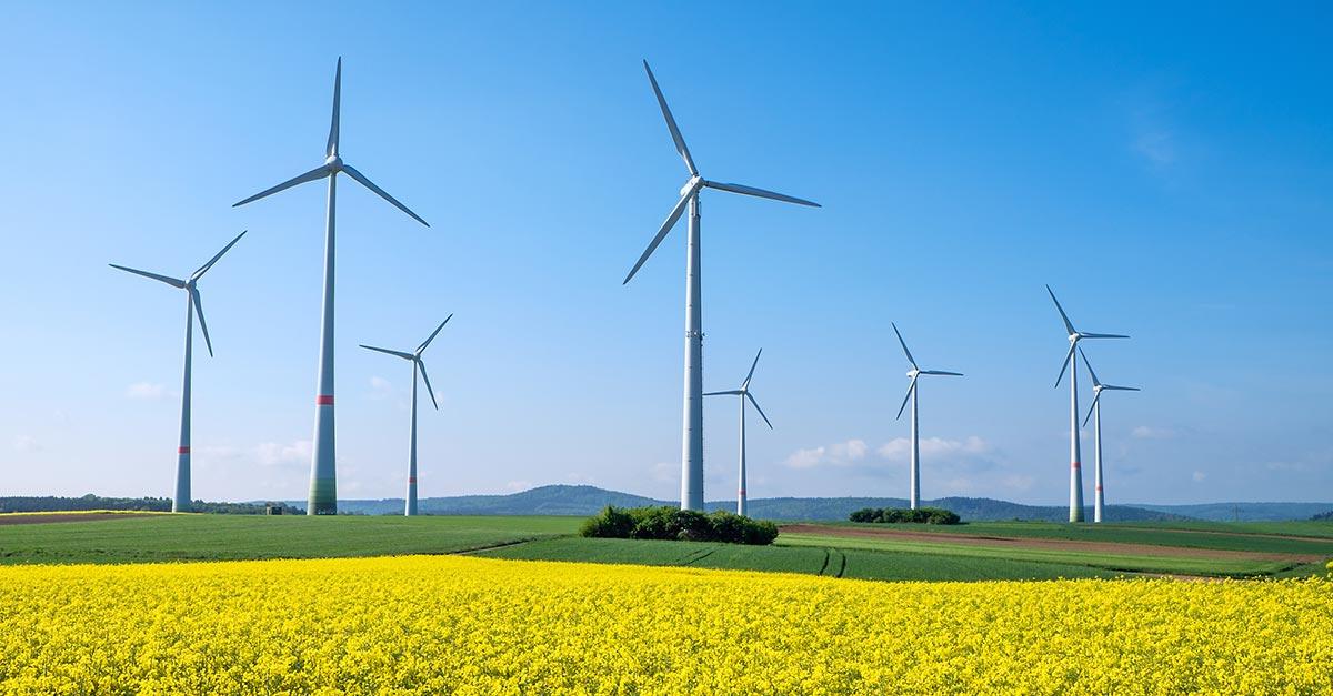 Efficientamento energetico: dal MISE 100 milioni di euro per le imprese del Sud