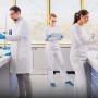 Controllo qualità alimentare: la formazione adatta per il lavoro in questo settore