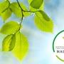Made Green in Italy: nuove opportunità di sviluppo