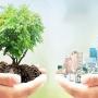 Sostenibilità aziendale, le imprese green hanno un vantaggio per superare la crisi