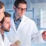 Regolamento sui Dispositivi Medici 2017/745 (RDM): procedure di valutazione della conformità