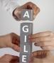 Gymnastic enterprise e business agility: la ricerca del PMI scaricabile in PDF